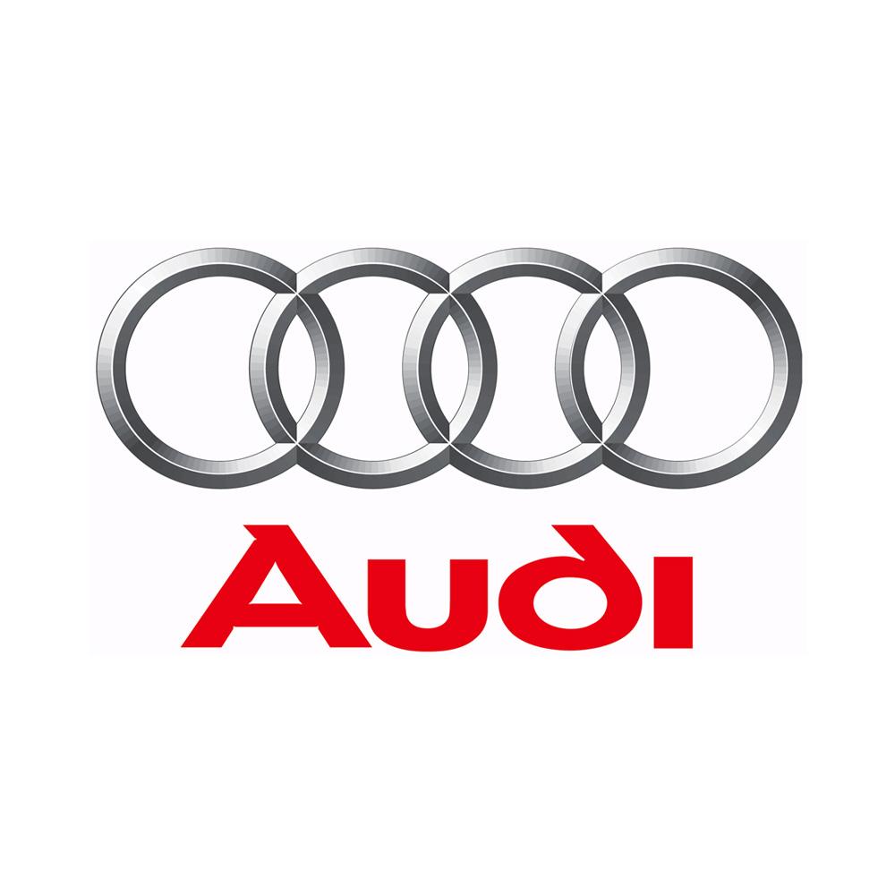 Audi Chapter 8 Kits