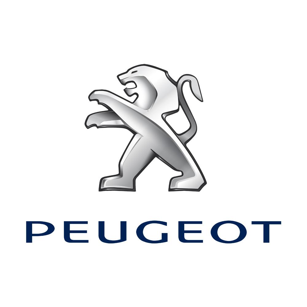 Peugeot Chapter 8 Kits