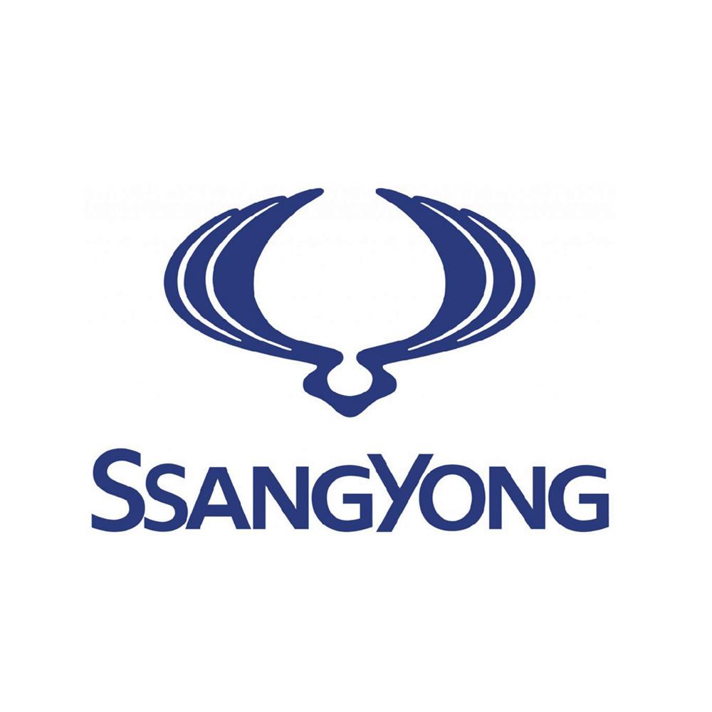 Ssanyong Chapter 8 Kits