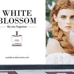 Avery MPI 3001 Digital Gloss White Removable